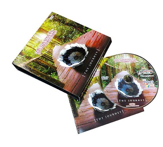 STB DVD copy